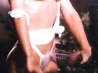 Playboy Moist And Wild 1
