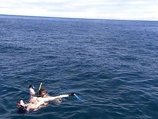 Underwater Fixation Xxx Activity On Webcam