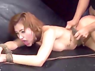 Restrain Bondage Gloves And Tied Belt Cock Angry Boypatrons Have No Pro